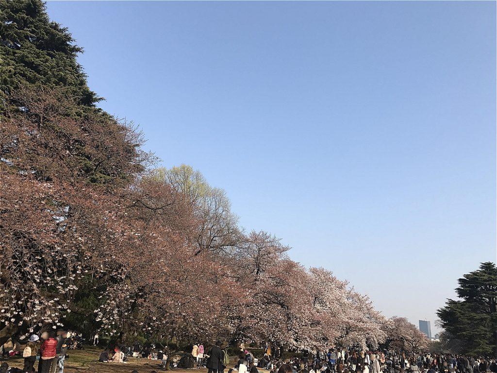 Shinjuku Imperial Garden ©まめぶろ